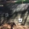 soil nail technique used to stabilize a failing retaining wall